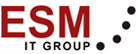 ESM IT Group